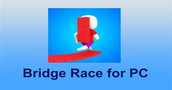 Bridge Race for PC