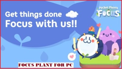 focus plant for pc